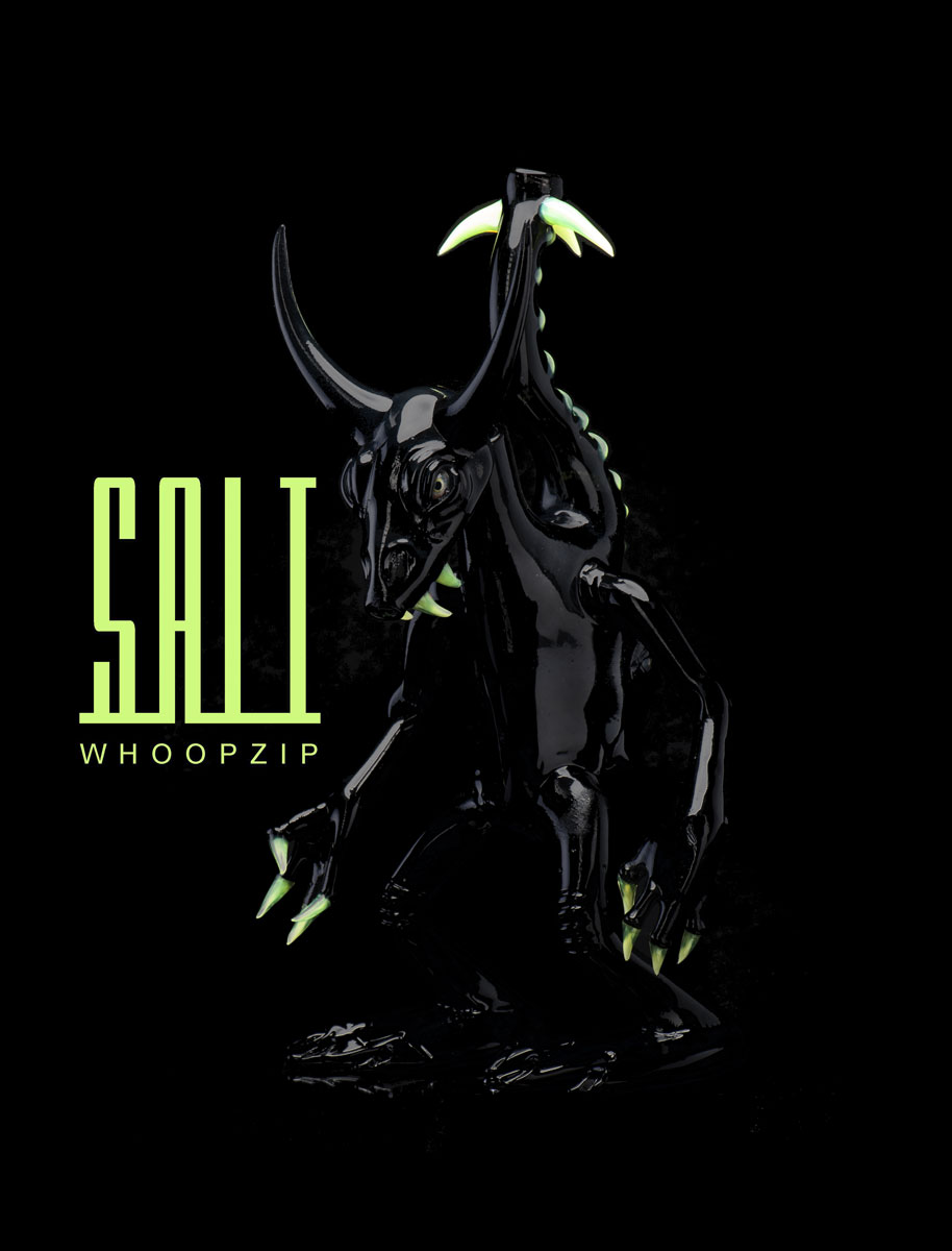 Whoopzip Salt Design
